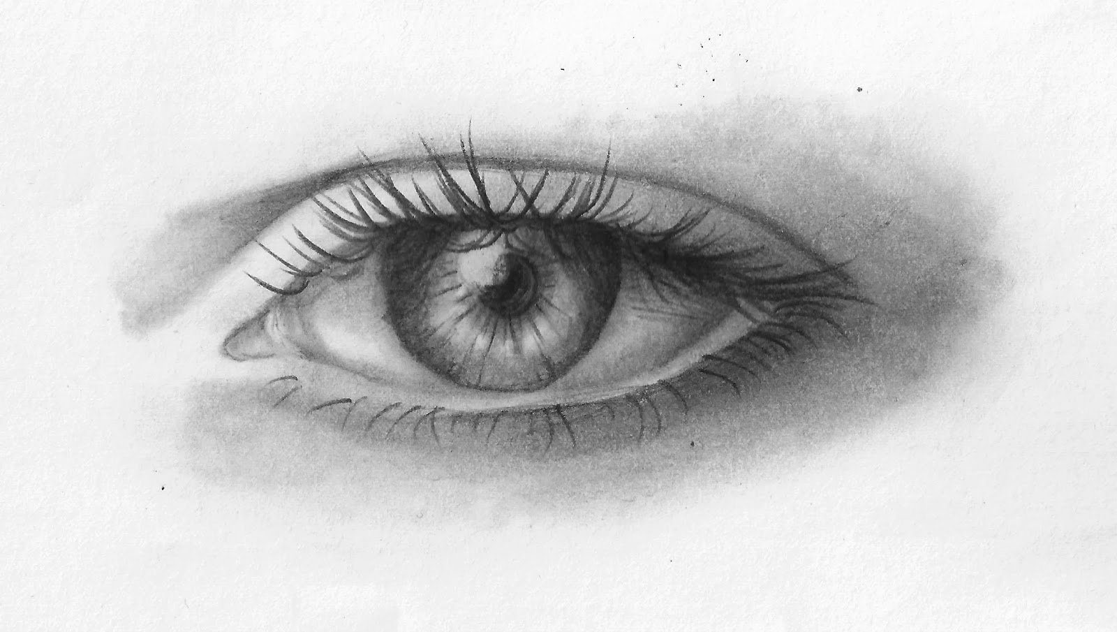 Occhi Disegnati A Matita Realistici Vk44 Regardsdefemmes