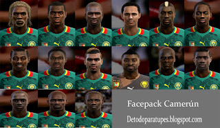 PES 2013 Facepack Seleccion Camerun
