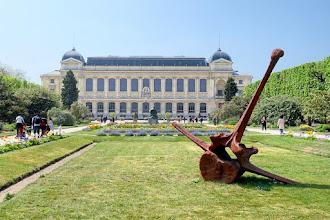 Paris : Vertebrata, une oeuvre de Quentin Garel, curieux vestiges d'un cétacé imaginaire - Jardin des Plantes - Vème