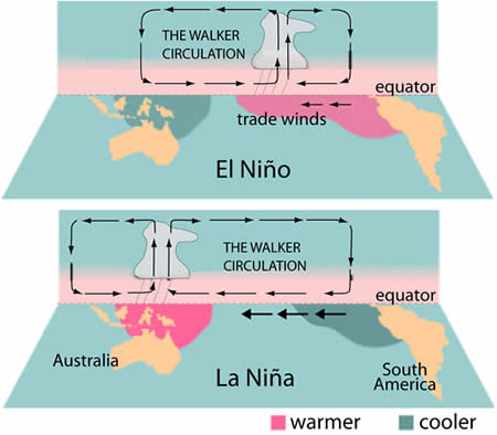 essay about el nino and la nina El niño is caused by the warming of sea surface temperature in the pacific and  can affect air  in may 2016, la niña watch was activated by the government.