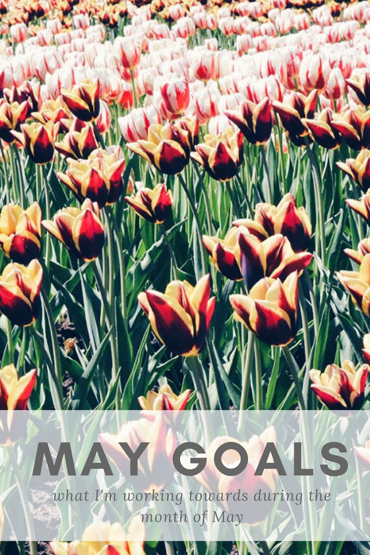 May Goals | kathleenhelen