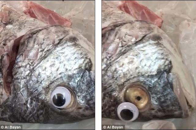 Τρελή έμπνευση από ιδιοκτήτη εστιατορίου για να ξεγελάσει τους πελάτες τους - Έβαζε ψεύτικα μάτια στα ψάρια