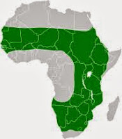 Área de distribución