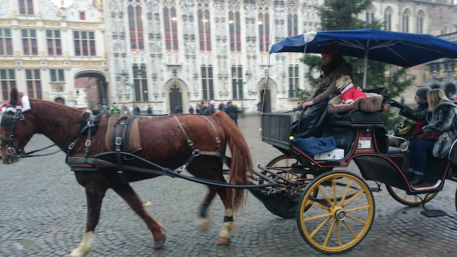Horse carriage, central square, pug in a christmas jumper