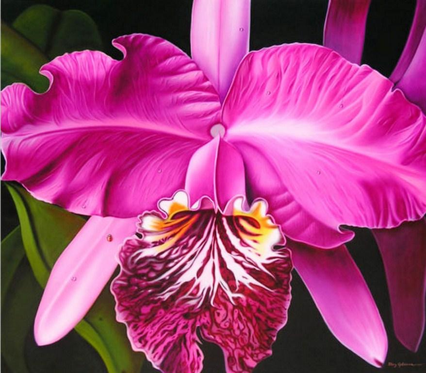 Cuadros Modernos De Flores Pintura Al Oleo Como Pintar Flores Diy
