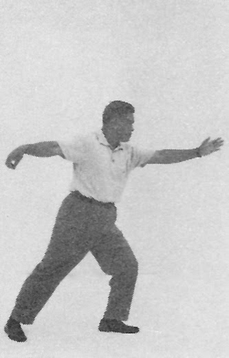Tai Chi Chuan (Square Form) 23. Fist Under Elbow