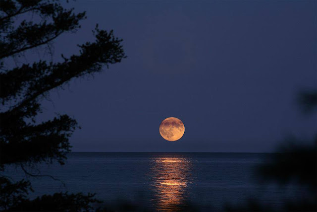 Cores & Sabores: Uma Maravilhosa Noite Pra Você
