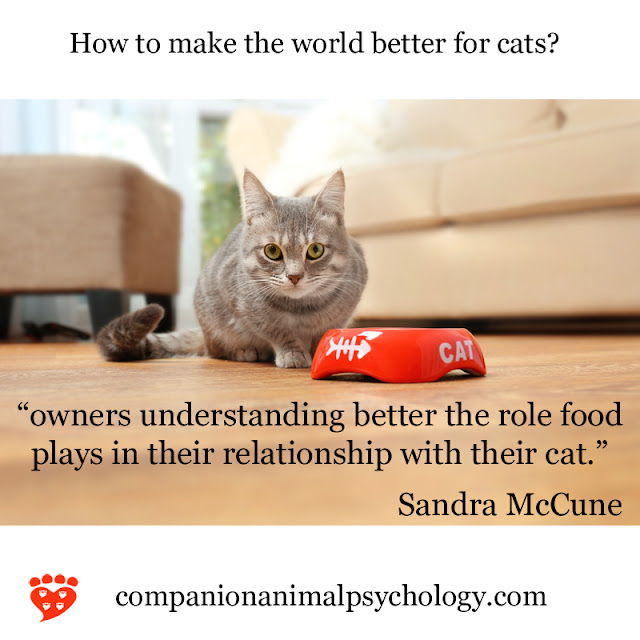 A cat by its food bowl - understand the role of food for a better relationship with your cat