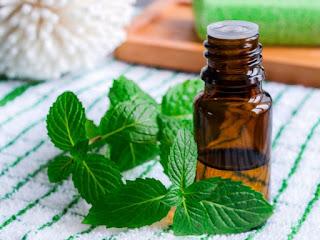 Aceite de Hierbabuena Para Curar Un Herpes Labial