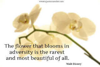 Inspirational Quote by Walt Disney