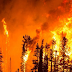 Ola de incendios arrasa Galicia, Asturias y Portugal