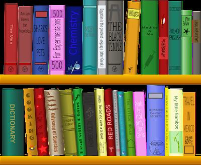 Two-Shelf Bookshelf with Dozens of Different Books