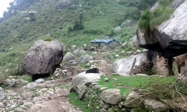 Jalsu Pass Trek from Uttrala Paprola Baijnath Palampur Side