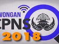 Informasi Lengkap Tentang Pendaftaran, Penerimaan dan Jadwal Tes CPNS 2018