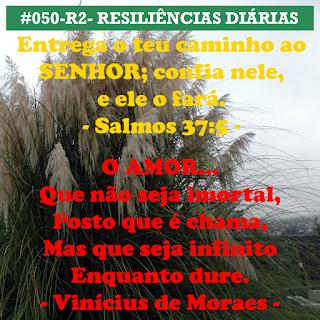 050-R2- RESILIÊNCIA 2