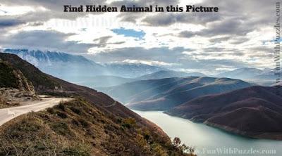 Hidden Animal Picture Puzzle