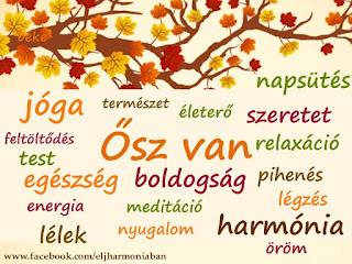 jóga, meditáció, ősszel, őszi, pihenés, feltöltődés, immunrendszer, pozitív gondolatok,