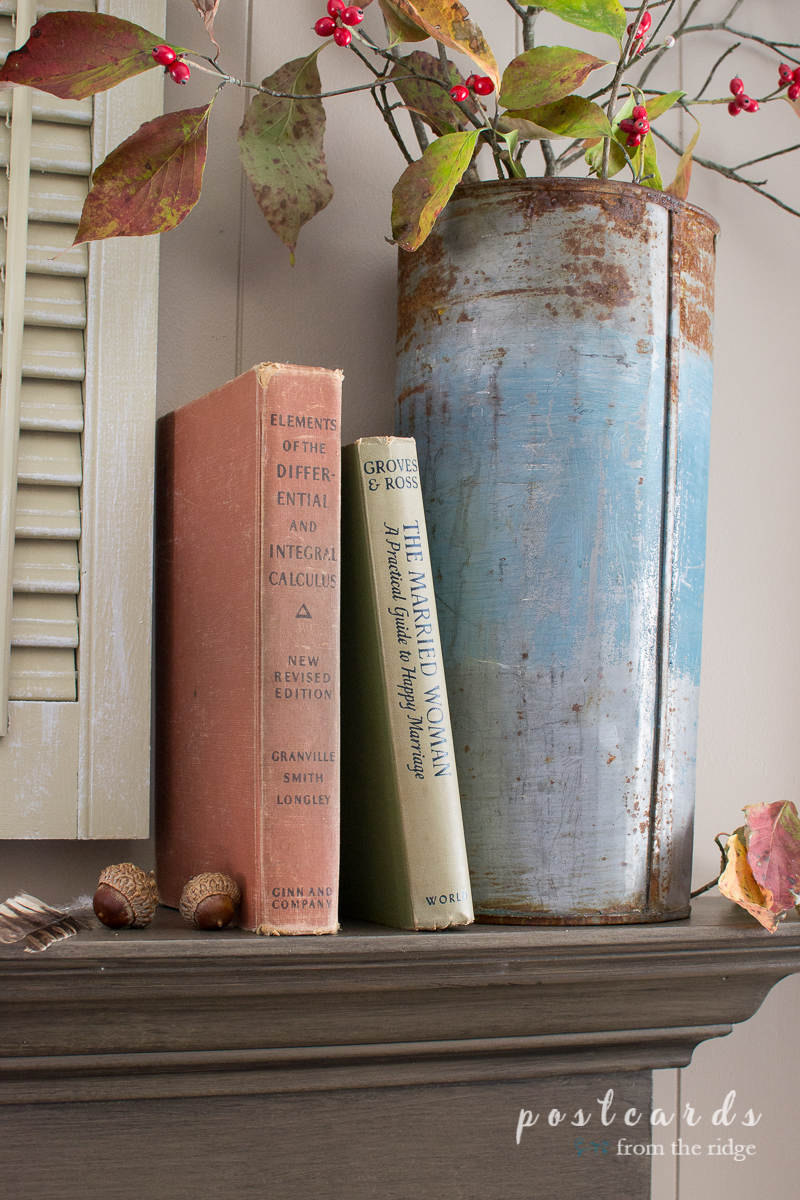 old books and vintage metal sap bucket