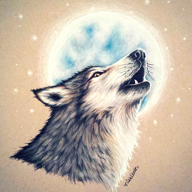 10-Wolf-Nikki-Beth-Animal-Portrait-Drawings-in-different-Styles-www-designstack-co