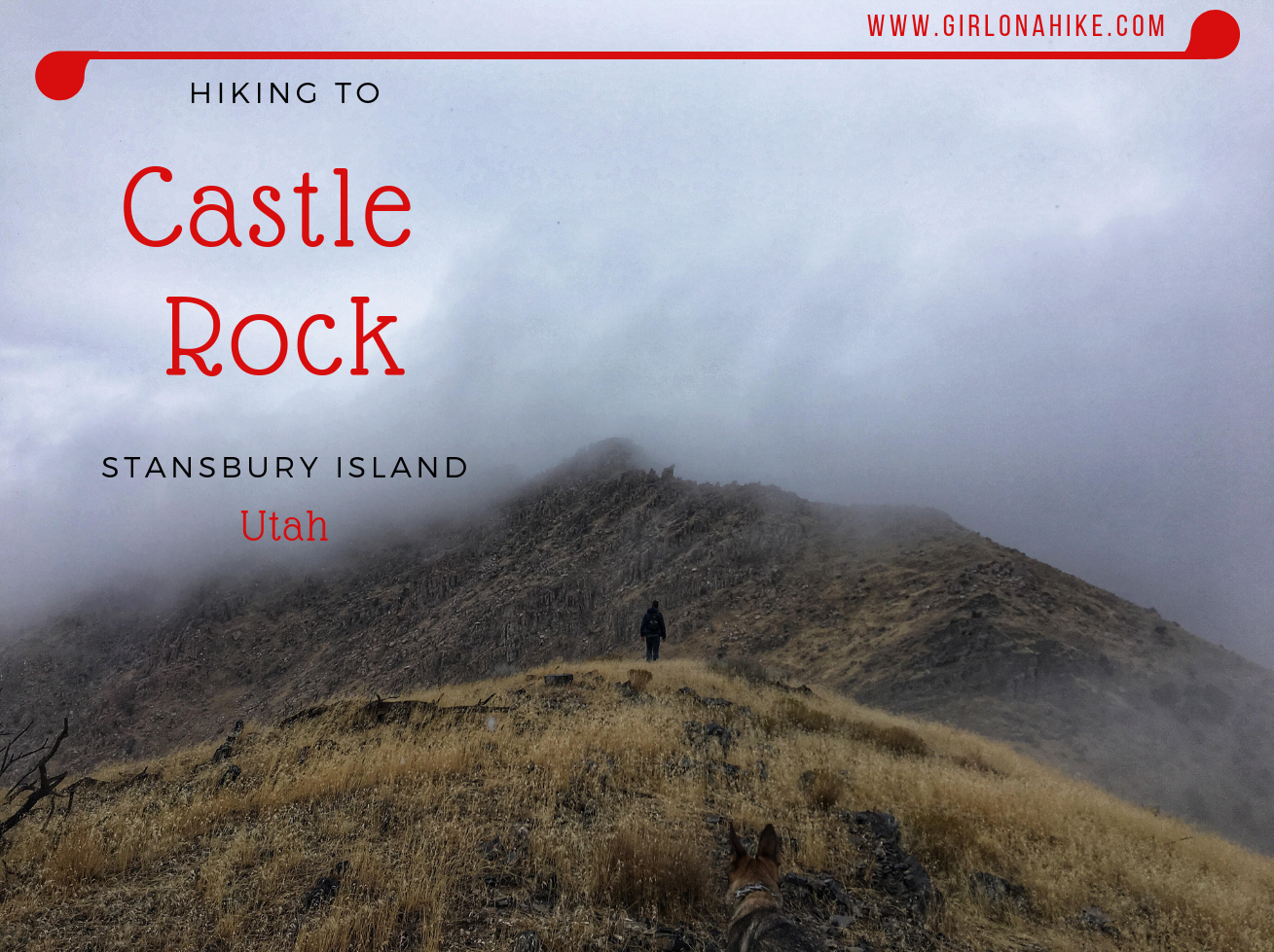 Viral Images: Real or Fake?: Castle House Island Dublin ... |Castle Rock Island