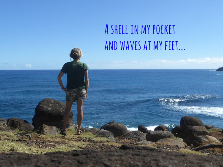 A shell in my pocket and waves at my feet...