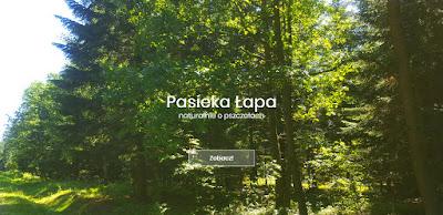 www.pasiekalapa.pl