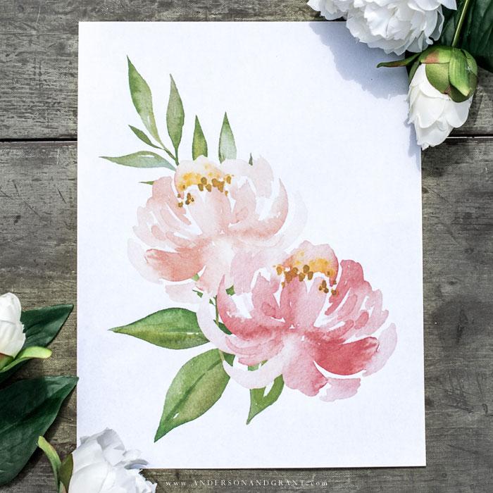 Watercolor peony print