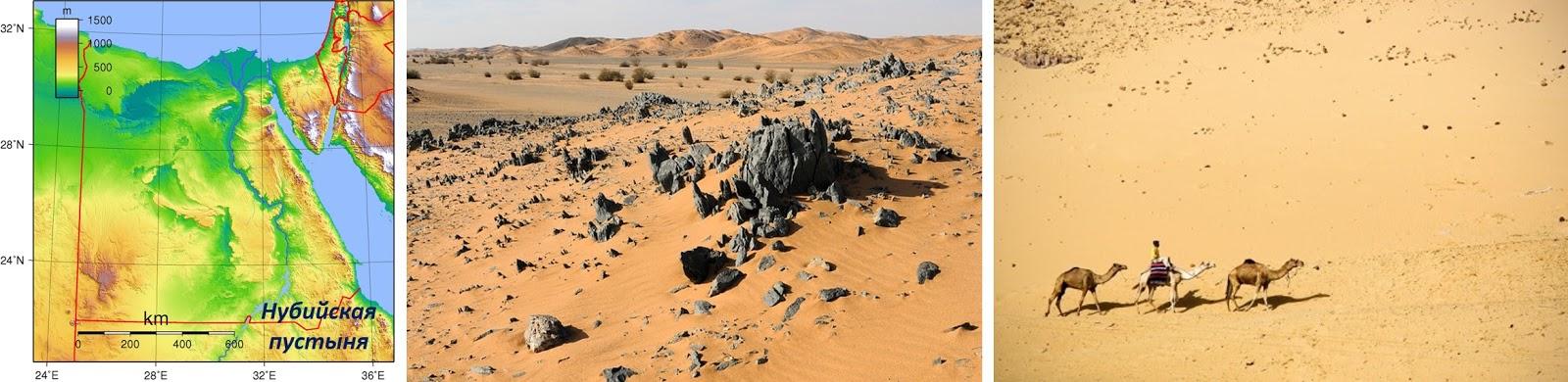 juodosios dykumos prekybos variantas