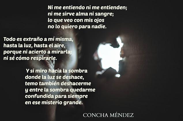 blog-de-poesia-miguel-angel-cervantes-concha