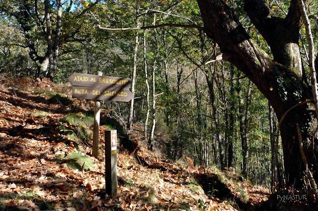 Desvío a Brusquete - Ruta del Silencio - Asturias