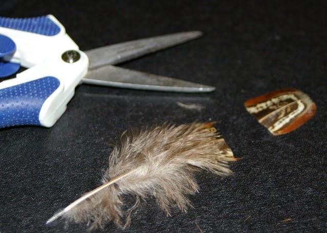 manicura, uñas, plumas de aves, tutoriales, ideas útiles