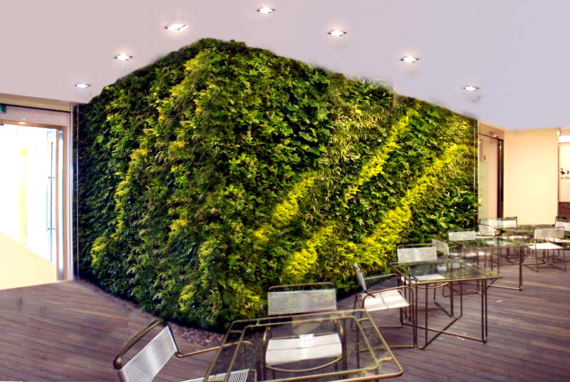 World Class Green Wall Vertical Garden by Technic Garden ...