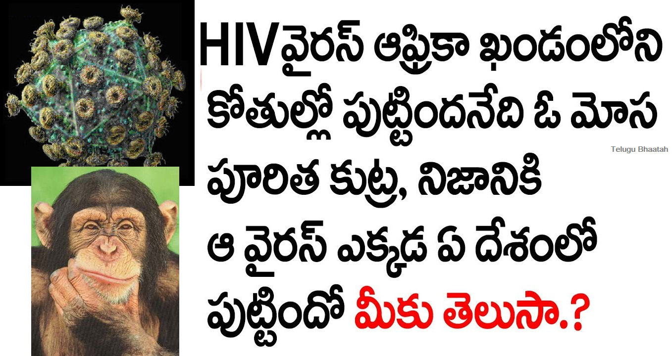 How Aids come from -  aids vyadi yela vachindi