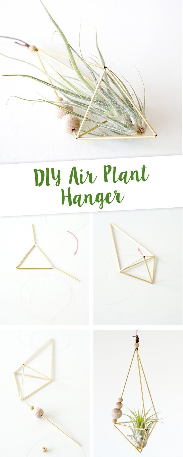 http://www.aentschiesblog.com/2017/04/diy-air-plant-hanger.html