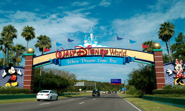 cool facts about disney world
