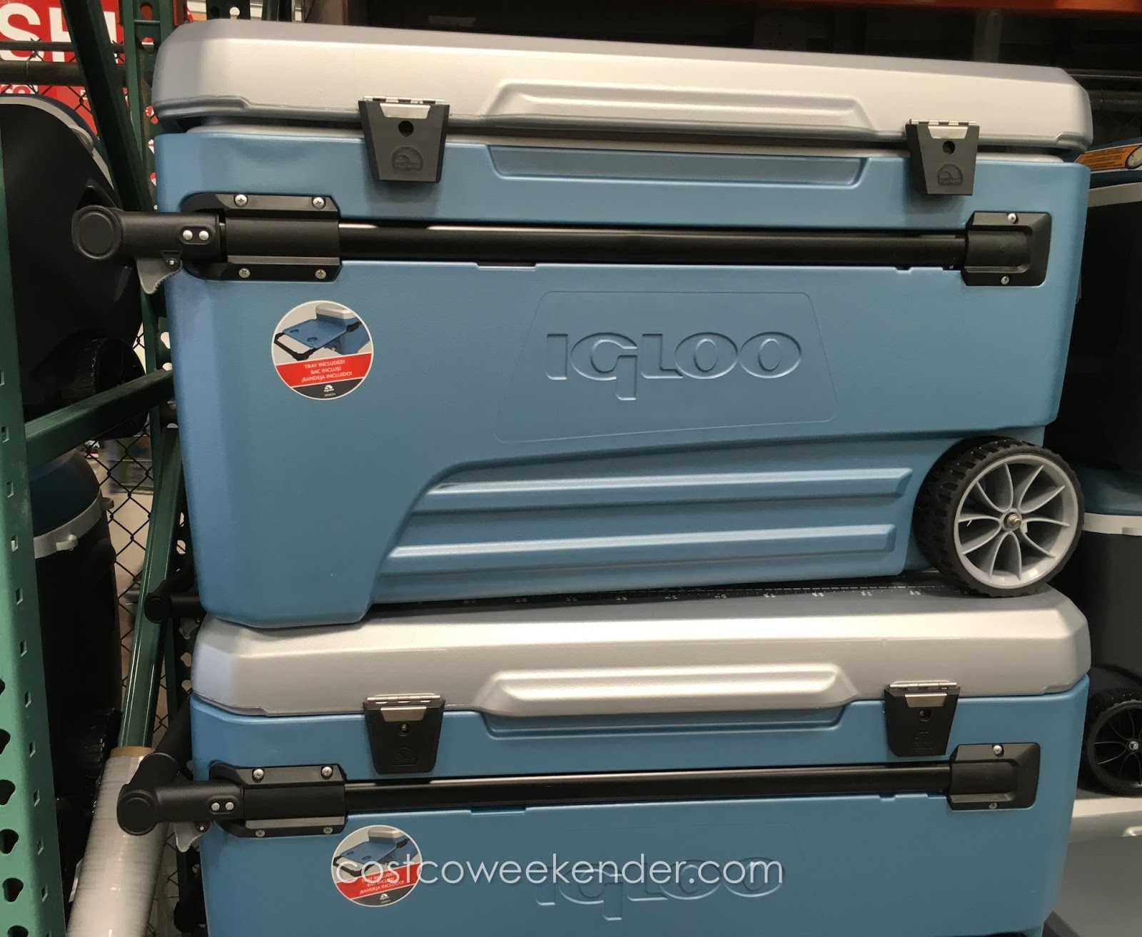 Camping Coolers At Costco Sante Blog