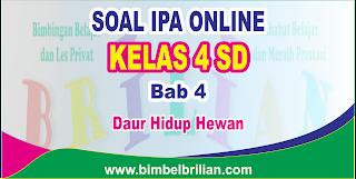 Soal IPA Online Kelas 4 ( Empat) SD Bab 4 Daur Hidup Hewan Langsung Ada Nilainya