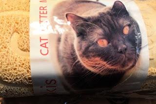 LEOKIS Cat Litter Mat
