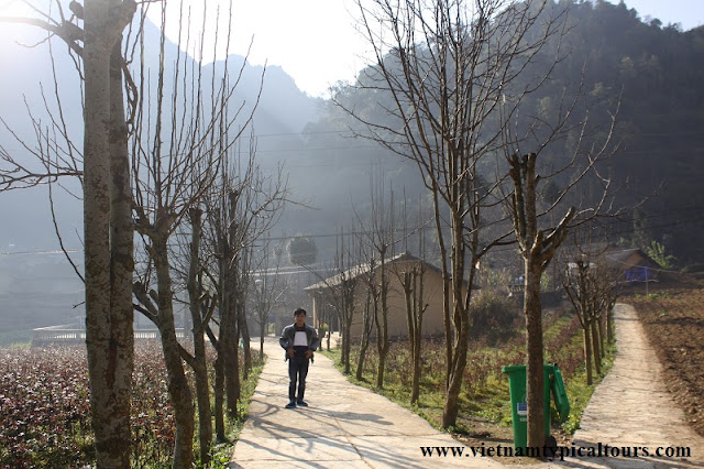 Ha Giang Tour: What to do? 3
