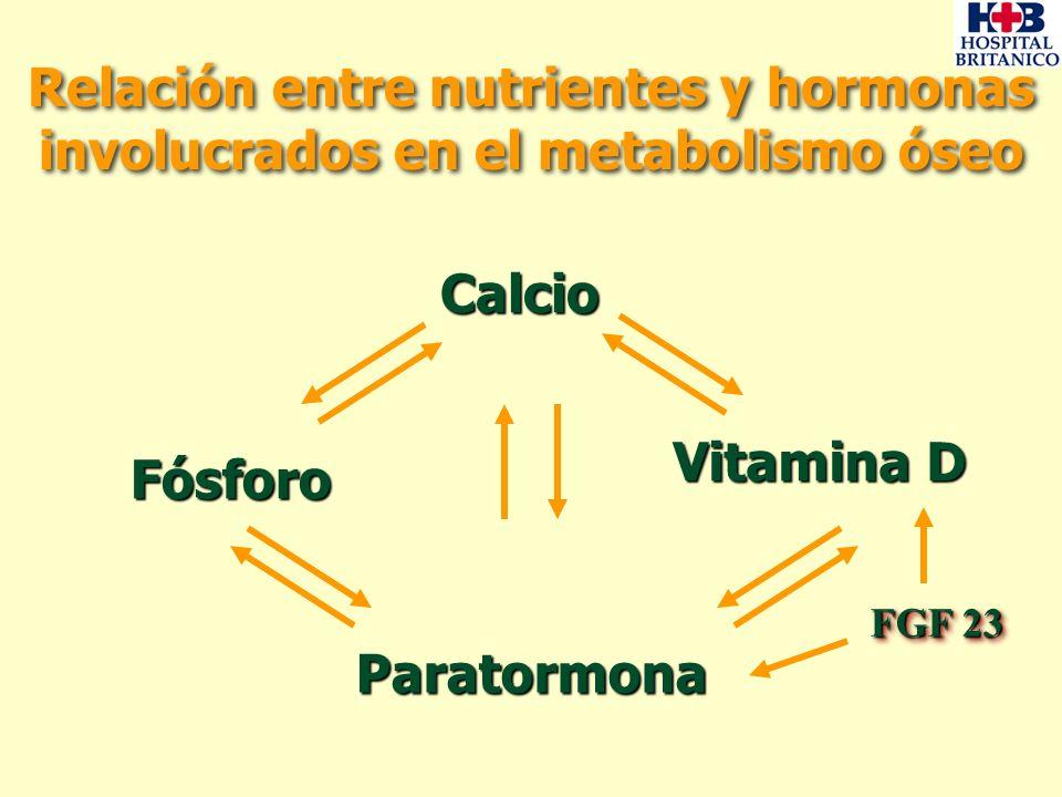 dieta del metabolismo métodos de mejora