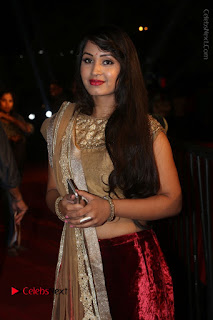 Actress Vennela Stills in Lehenga Choli at Gemini TV Puraskaralu 2016 Event  0038.JPG