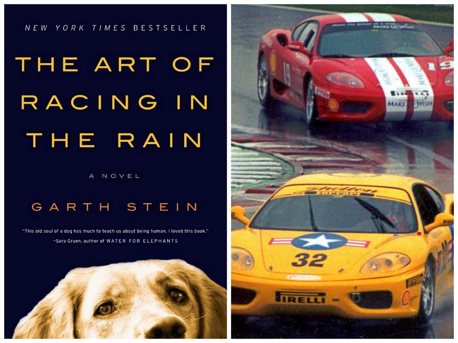 "The Art Of Racing In The Rain: Delicious Reads: ""The Art Of Racing In The Rain"" {by Garth"