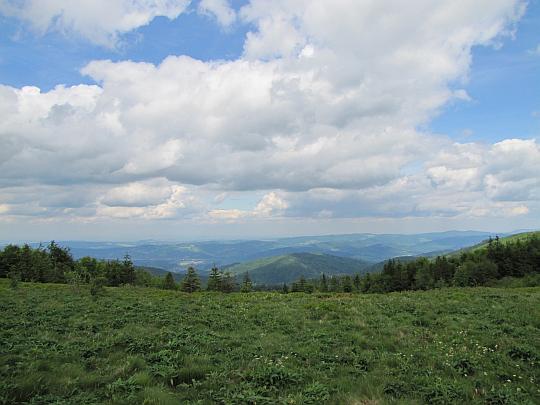 Widok z Kucałowej Przełęczy na północ, gdzie rozciąga się Pasmo Jałowieckie.