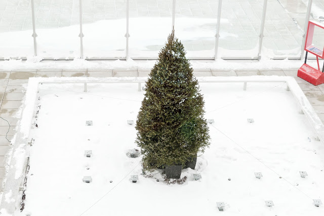 Christmas tree on the terrace at Observatorie 360º in Montréal, Canada