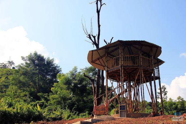 Bamboo Watch Towers-doyang-amur-falcon-site