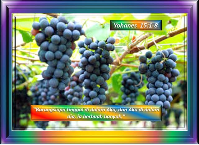 YOHANES 15:1-8