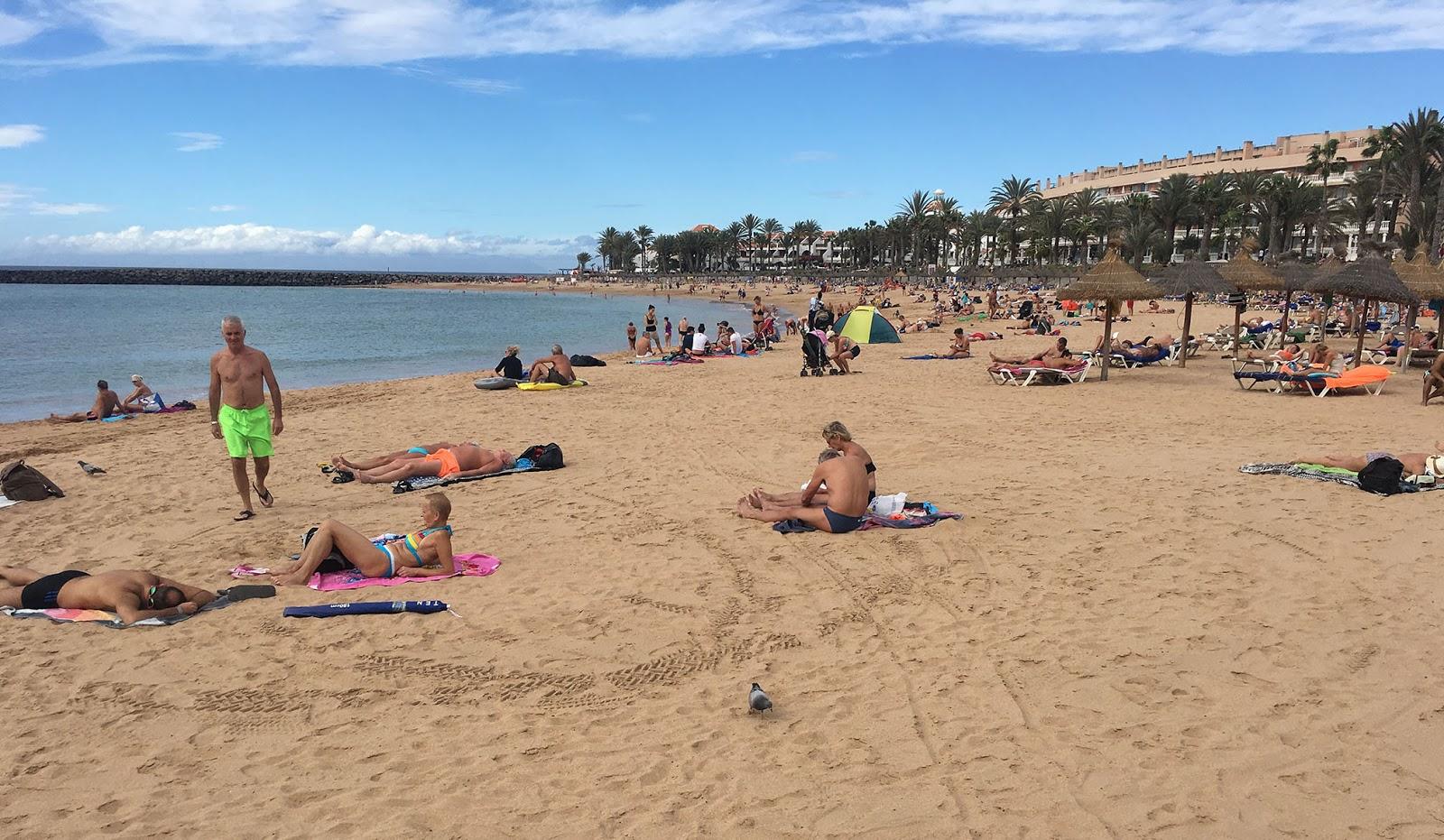 Running Routes Tenerife Playa de las Americas Running Route