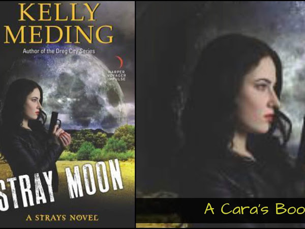 Stray Moon by Kelly Meding Review