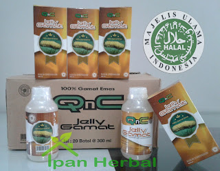Obat Herbal Asam Urat QnC Jelly Gamat