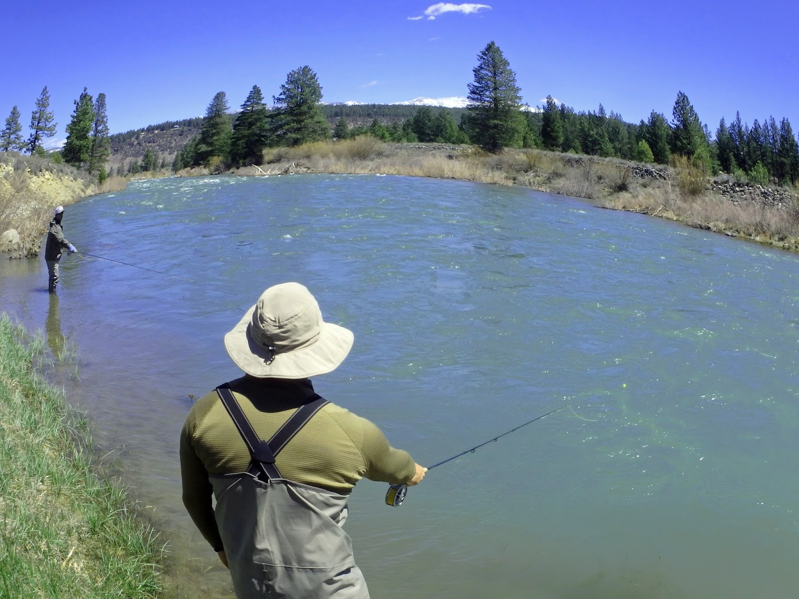 Truckee river fishing report 5 3 2017 article wed 03 for Truckee river fishing report
